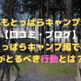 ふもとっぱらキャンプ場【口コミ・ブログ】ふもとっぱらキャンプ場で初心者がとるべき行動とは?